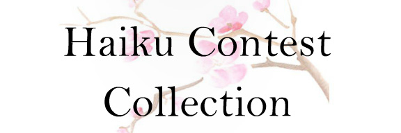 Haiku Collection 2015